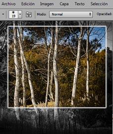 Cursos de fotografia Online - Introducción al Photoshop