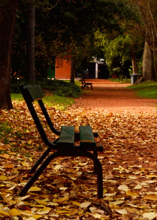 Salida Fotografica - Foto Ezequiel Martínez - cursos de Fotografía y video
