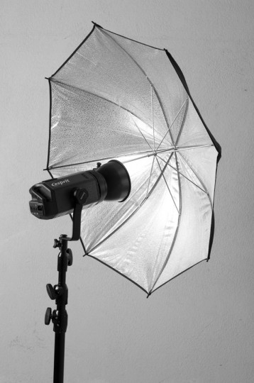 Paraguas plateado