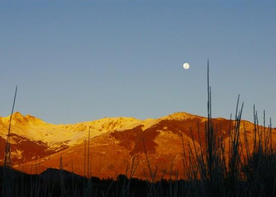 Foto de Marta di Bitetti del curso de fotografía nivel 1 Online