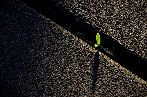 Foto de Paloma García del curso de iluminación básico Online