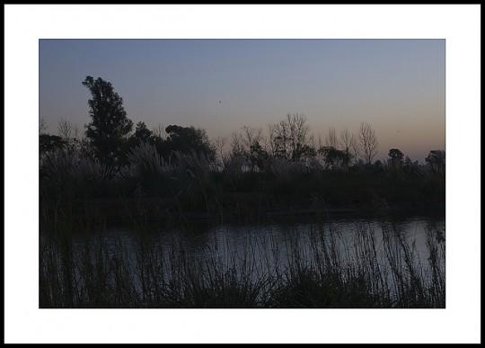 Foto de Gaby Reginato de Trelew, Chubut, Argentina, para el curso de fotografía nivel 1 Online
