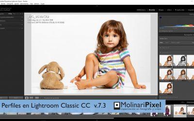 Como funcionan los nuevos perfiles de Lightroom Classic CC 7.3