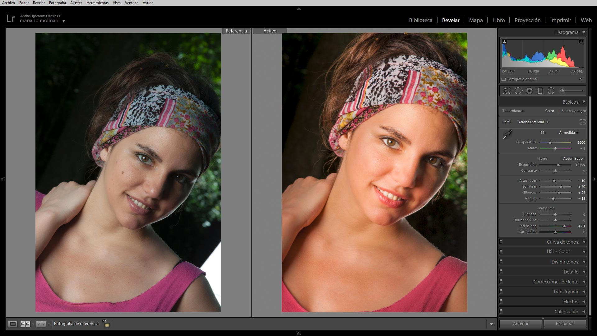 Aprender Lightroom Online Tutorial