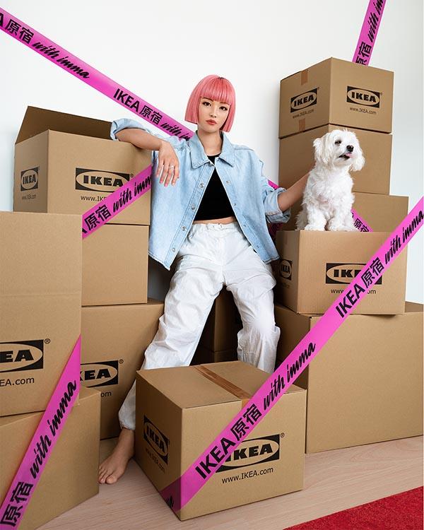 Modelo IKEA IMMA